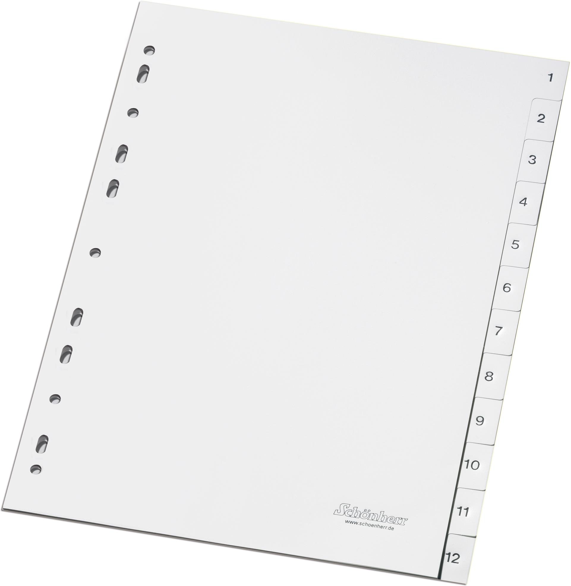 Weiße Standard-Register für A4 von 1-12 mit einseitig bedruckten Taben und Eurolochung